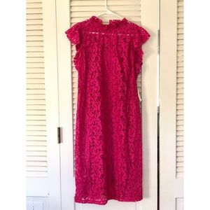 NWT Alexia Admor Lace Sheath Dress